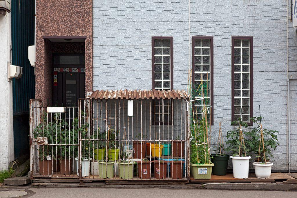 Hausfassade mit Kübelpflanzen davor