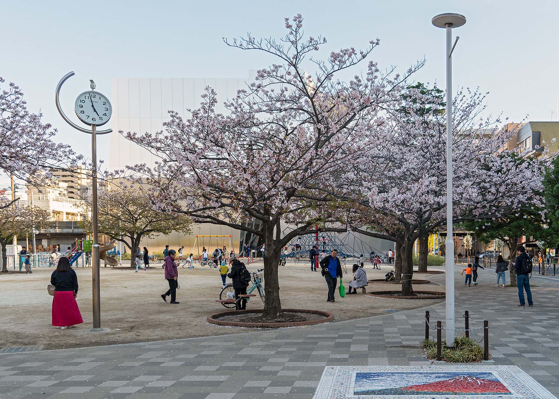 Blühende Kirschbäume auf dem Platz vor dem Museum