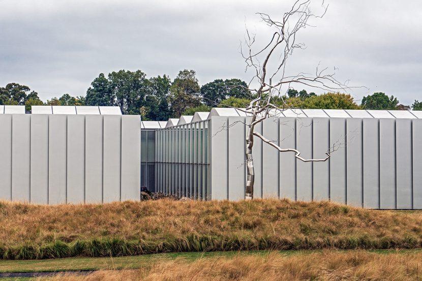 Stahlbaum vor Raleigh Art Museum