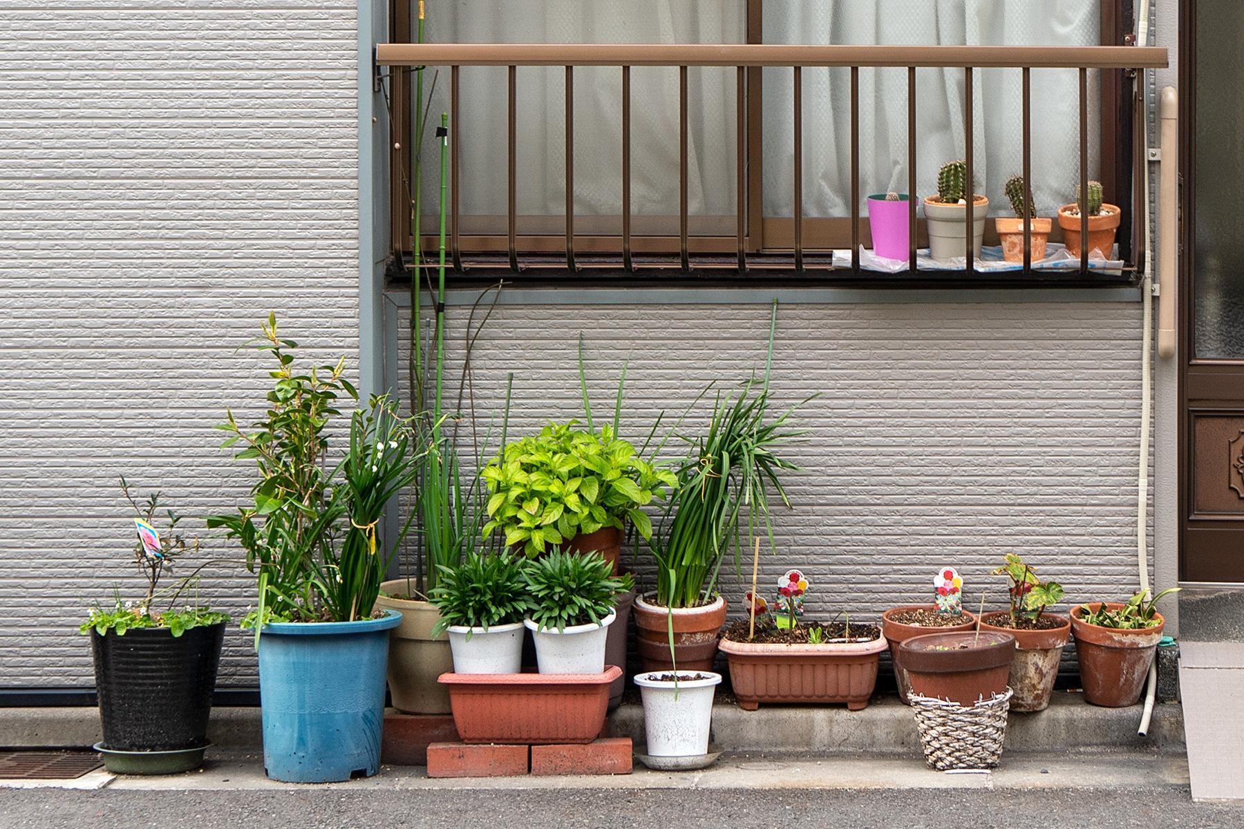 Blumentöpfe vor Haus